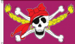 5ft x 3ft 100d Girls Large Pirate Ship Jolly Roger Skull and Crossbones Flag